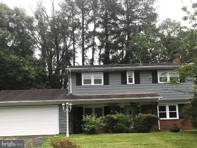 Temple Hills Single Family Home For Sale: 4613 Sharon Road