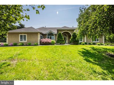 North Wales Single Family Home For Sale: 447 Amity Lane