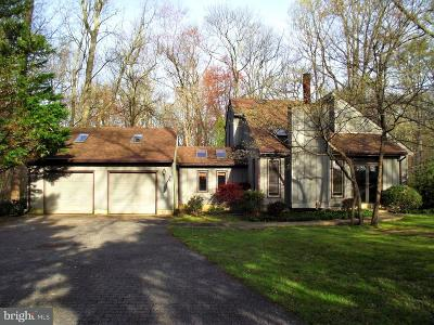 Centreville Single Family Home For Sale: 1711 Centreville Road