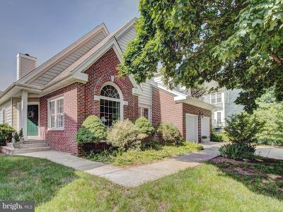 Ashburn Single Family Home For Sale: 43975 Louisa Drive