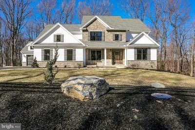 Hummelstown Single Family Home For Sale: 1250 Sand Hill Rd