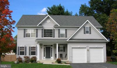 Howard County Single Family Home For Sale: 13193 Highland Road