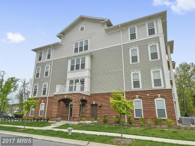 Silver Spring Condo For Sale: 3910 Doc Berlin Drive #21