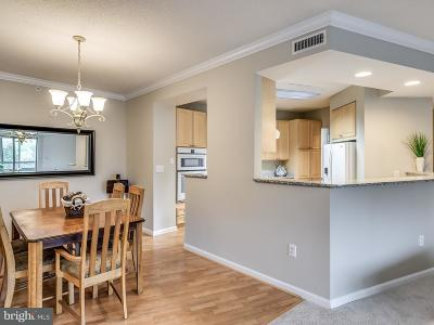 Leesburg Townhouse For Sale: 19360 Magnolia Grove Square #107