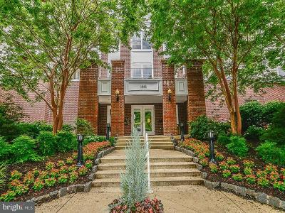 Mclean Single Family Home For Sale: 1641 International Drive #114