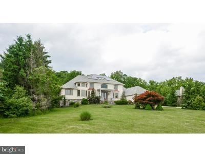 Bucks County Single Family Home For Sale: 5732 Carversville Road