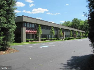Bucks County Commercial For Sale: 4050 Skyron Drive #D
