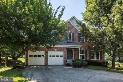 Columbia Single Family Home For Sale: 6520 Hazel Thicket Drive