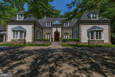Potomac Single Family Home For Sale: 11218 River View Drive