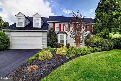 Ashburn Single Family Home For Sale: 21166 Cavalier Court