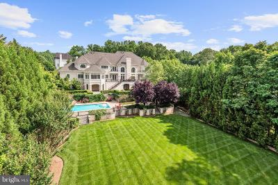 Fairfax County Single Family Home For Sale: 886 Chinquapin Road