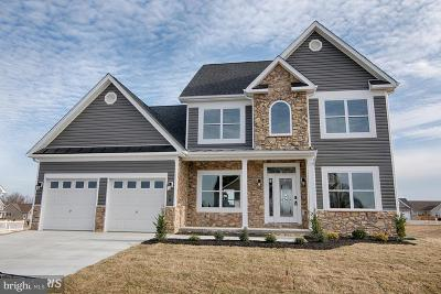 Hedgesville Single Family Home For Sale: Ridge Road S