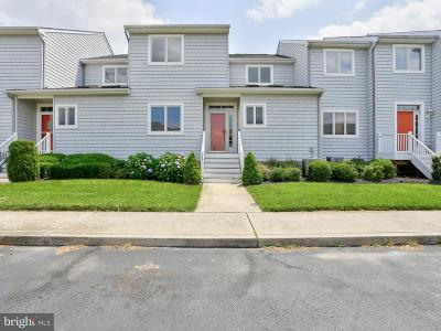Stevensville Condo For Sale: 1803 Marion Quimby Drive