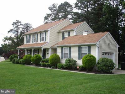 Millville Single Family Home For Sale: 11 Emily Drive