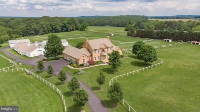 Cecil County Farm For Sale: 2618 Singerly Road