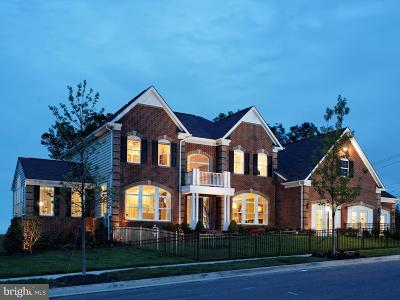 Aldie Single Family Home For Sale: Mill Wheel Place