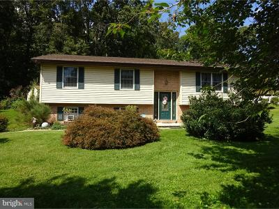 Royersford Single Family Home For Sale: 1157 S Township Line Road