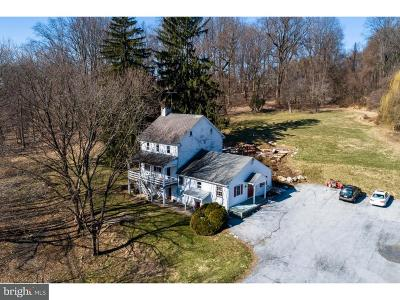 Phoenixville Single Family Home For Sale: 1050 Pike Springs Road