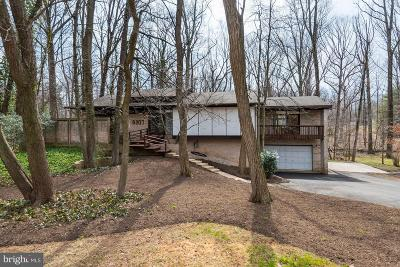Annandale Single Family Home For Sale: 8207 Woodland Avenue