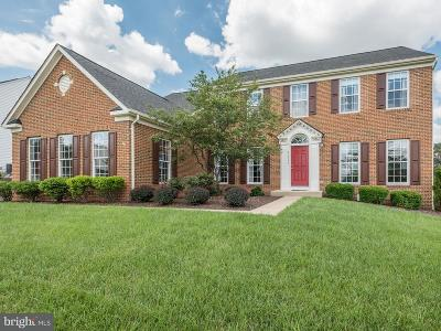 Ashburn Single Family Home For Sale: 42948 Val Aosta Drive