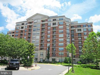 Reston Condo For Sale: 11770 Sunrise Valley Drive #122