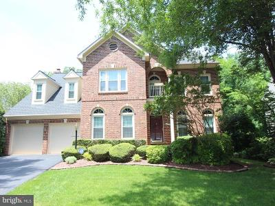 Sterling Single Family Home For Sale: 46486 Capelwood Court