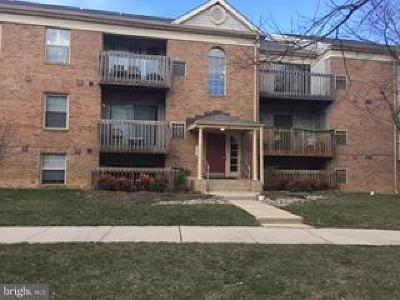 Essex Single Family Home For Sale: 2 Banyan Wood Court #101