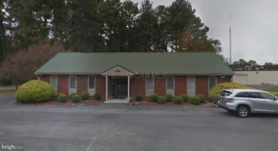 Somerset County, Wicomico County, Worcester County Commercial For Sale: 606 S Schumaker Drive