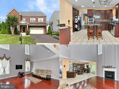 Aldie Single Family Home For Sale: 24795 Wind River Drive
