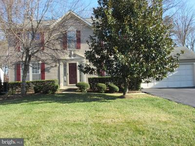 Centreville Single Family Home For Sale: 6537 Wheat Mill Way