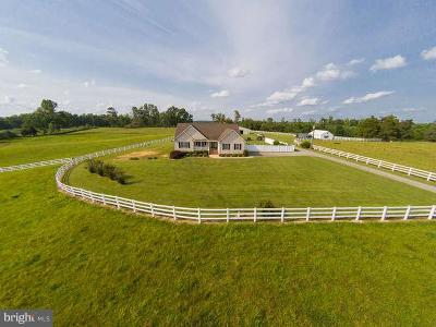 Beaverdam, Bowling Green, Doswell, Fredericksburg, Hanover, Ladysmith, Milford, Port Royal, Rappahannock Academy, Ruther Glen, Woodford Farm For Sale: 9315 Paige Road