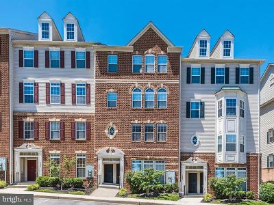 Elkridge Townhouse For Sale: 7245 Darby Downs