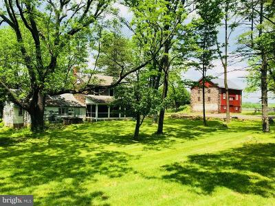 Bucks County Single Family Home For Sale: 6356 Durham Road