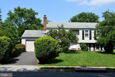 Herndon Single Family Home For Sale: 12719 Magna Carta Road