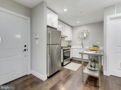 Petworth Single Family Home For Sale: 528 Kennedy Street NW #101