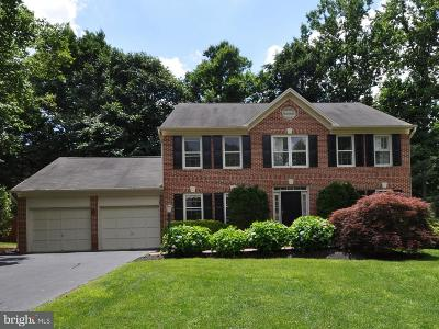 Fairfax Station Single Family Home For Sale: 9211 Silverline Drive