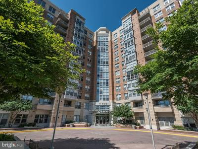 Reston Single Family Home For Sale: 11800 Sunset Hills Road #827