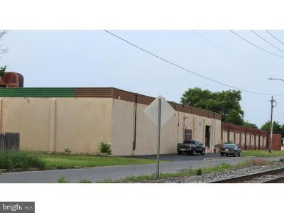 Vineland Commercial For Sale: 217 W Peach Street