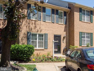 Silver Spring Townhouse For Sale: 3845 Ferrara Drive
