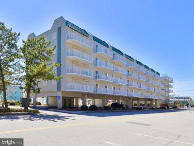 Ocean City Townhouse For Sale: 7 137th Street #108