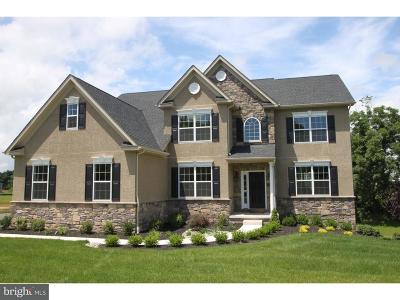 Collegeville Single Family Home For Sale: 1036 S Lewis Road