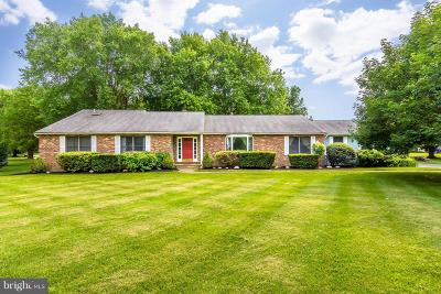 Grasonville Single Family Home For Sale: 3 Sycamore Court