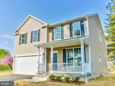 Single Family Home For Sale: 941 Hairfield Drive