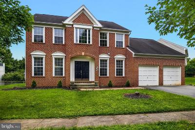 Gaithersburg Single Family Home For Sale: 8304 Stedmall Terrace
