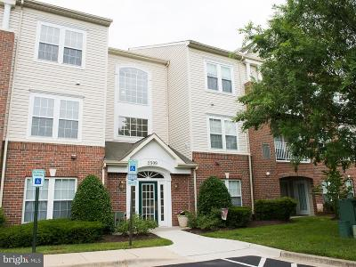 Odenton Single Family Home For Sale: 2509 Amber Orchard Court W #302