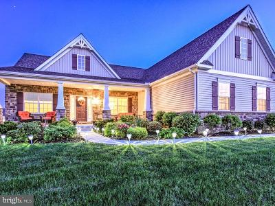 Etters Single Family Home For Sale: 50 Hunters Chase