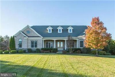 Aldie Single Family Home For Sale: 23475 Spinning Wheel Court