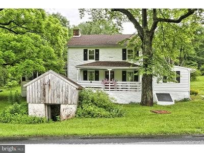 Birdsboro Single Family Home For Sale: 1215 Rock Hollow Road