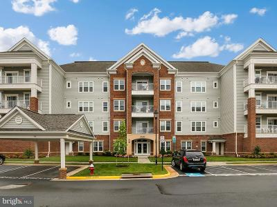 Ashburn Condo For Sale: 20655 Hope Spring Terrace #406