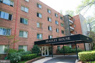 Chevy Chase Condo For Sale: 4800 Chevy Chase Drive #303
